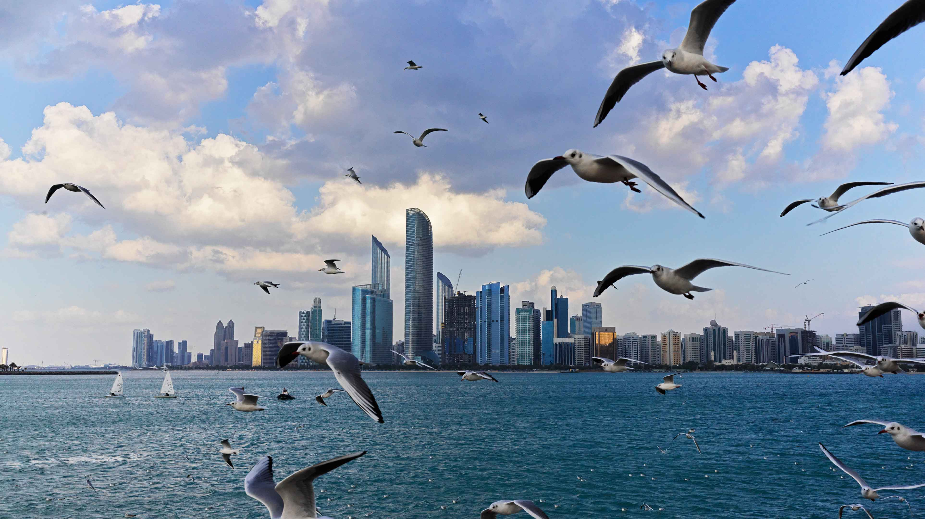 COVID-safe travel to and from Abu Dhabi | Visit Abu Dhabi