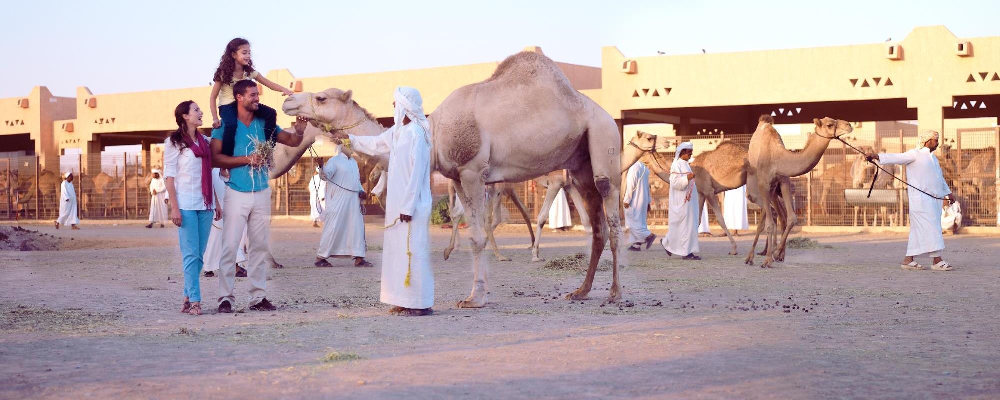Afbeeldingsresultaat voor jebel hafeet camel market
