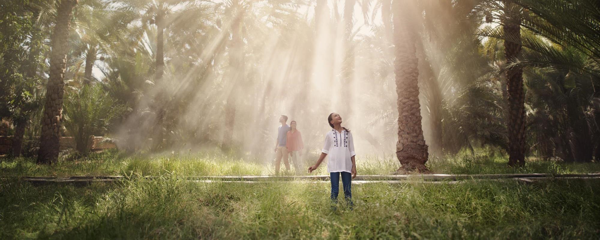 Afbeeldingsresultaat voor Al Ain Oasis