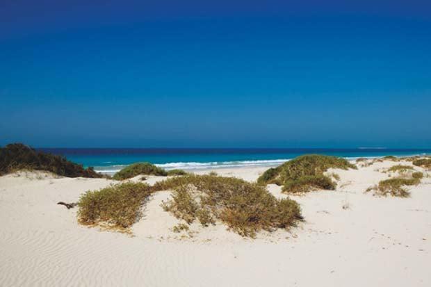 DataFolder/Images/What_to_see/The_Islands/Saadiyat_Island/16_Saadiyat-Beach.jpg