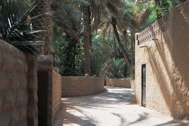 Al Ain Oasis