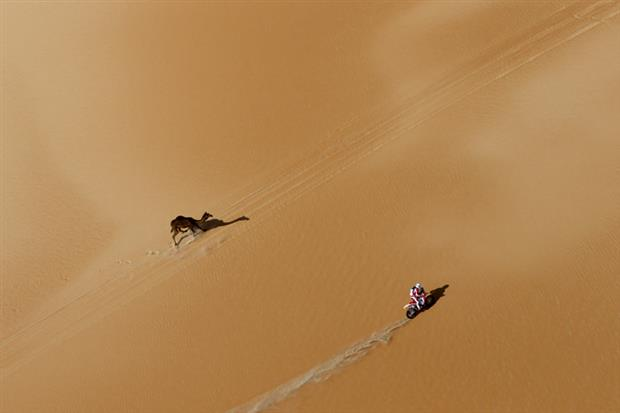 /DataFolder/Images/Events/2014-abudhabi-desert-challenge/Abu-Dhabi-Desert-Challenge-2013-70.jpg
