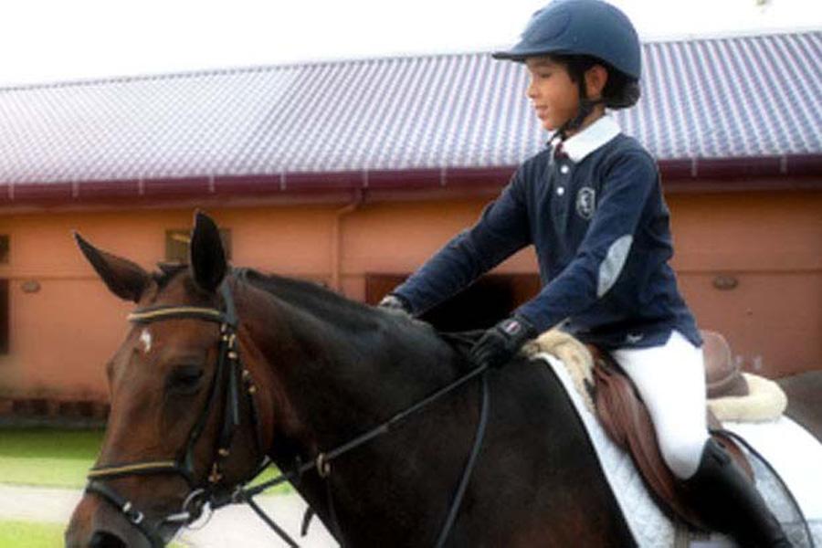Abu Dhabi Equestrian Club Visitabudhabi Ae